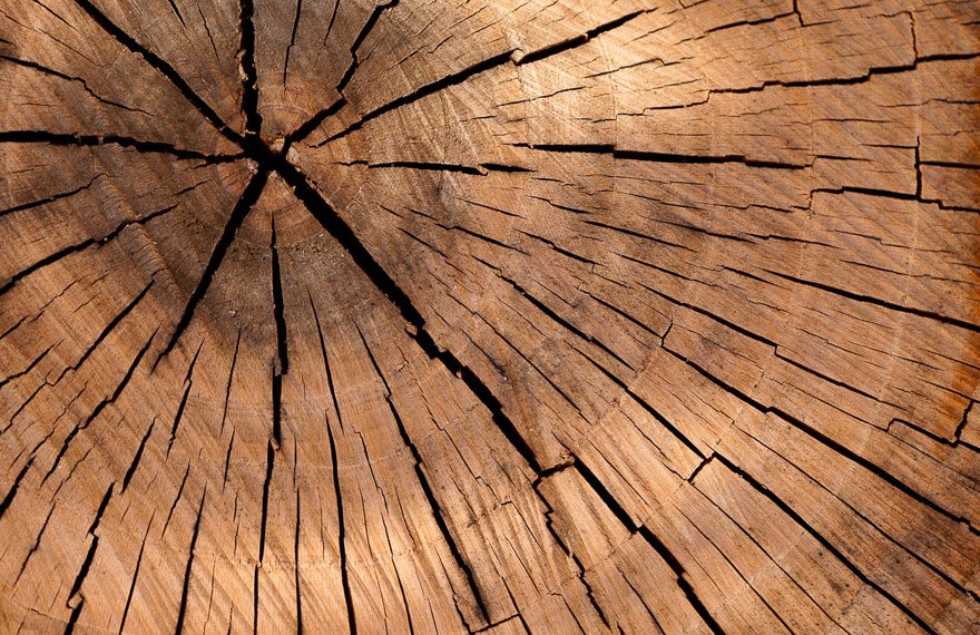 Duurzame houten vloer Haren