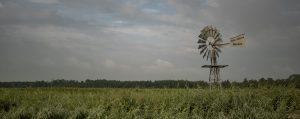 Wonen verhuizen in Friesland